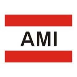 AMI MIDDLE EAST LLC